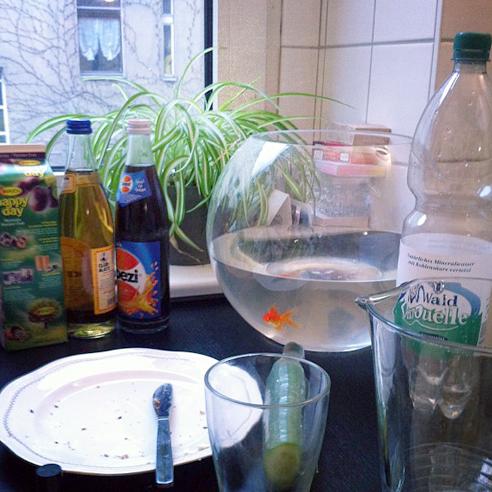 """""""Möchten Sie vielleicht ein wenig Gurke zu Ihrem Fisch?"""" Frühstück mit Oskar."""