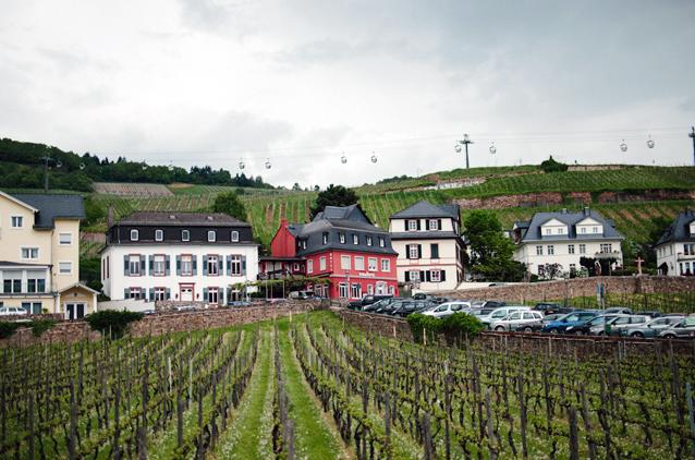 Etwa 40 Meter über den rauen Weinbergklippen von Rüdesheim wird einem, nicht nur der Trunkenheit wegen, speiübel.